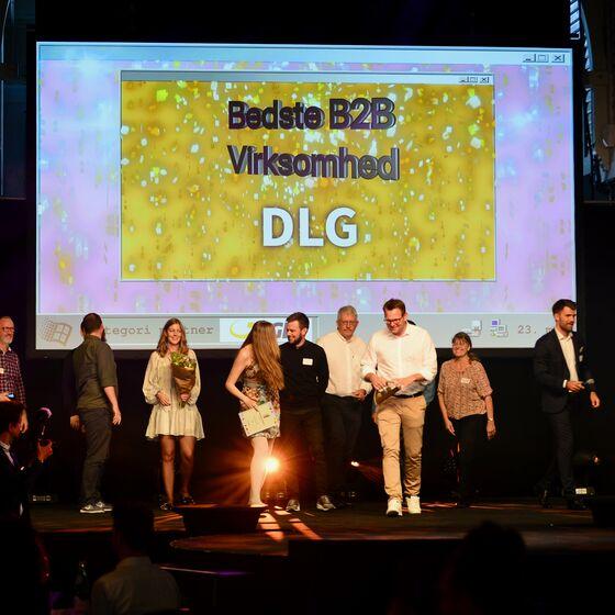 DLG vinder guld til E-handelsprisen 2019